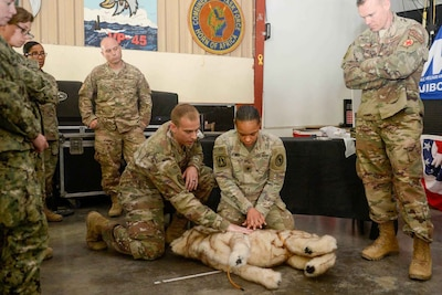 Camp Lemonnier Holds K-9 Casualty Care Training