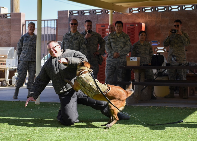 Airmen from units across the U.S. Air Force Warfare Center observe a K-9 display for the Warrior Stripe program at Nellis Air Force Base, Nevada, Aug. 16, 2018. The students were pulled from the Warfare Center and its supporting units. (U.S. Air Force photo by Airman 1st Class Andrew D. Sarver)