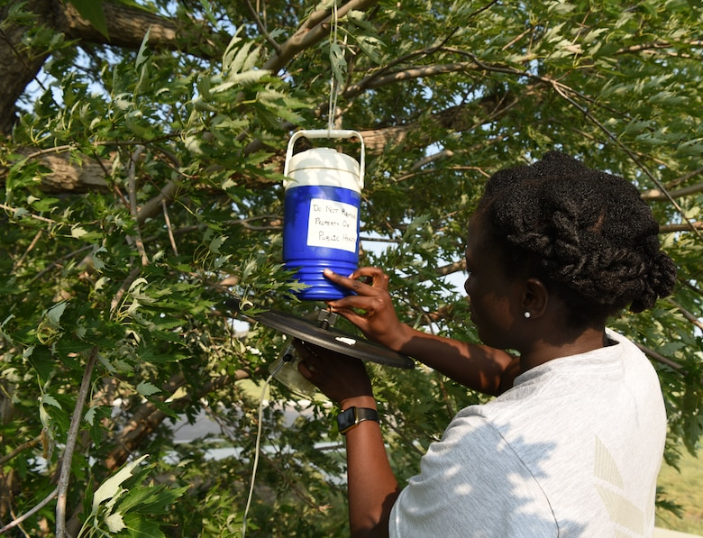 Airman 1st Class Georgette Ndamukong, a 28th Medical Group public health technician, sets up a mosquito trap at Ellsworth Air Force Base, S.D., Aug. 13, 2018. Public health members capture mosquitoes on a continuous basis to be sent off and tested for diseases, such as the West Nile virus. (U.S. Air Force photo by Airman 1st Class Thomas Karol)