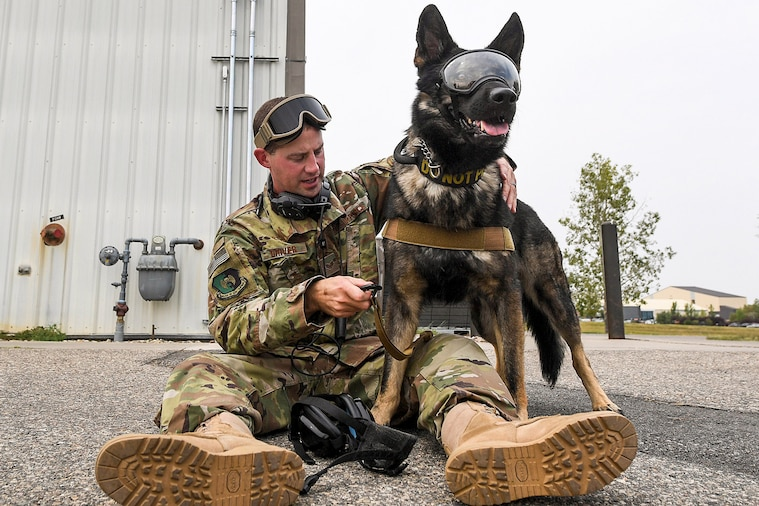An airman with goggles on his forehead sits on the ground and adjust equipment on a dog wearing goggles.