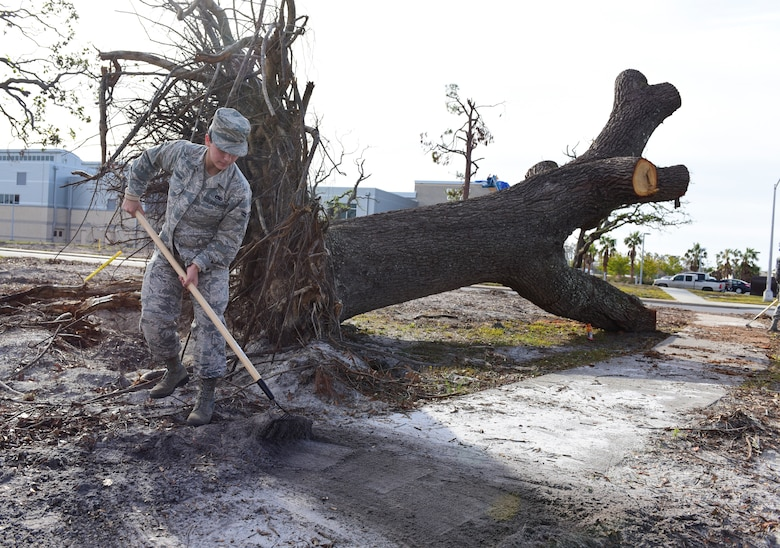 Airman 1st Class Audrey Carranco, 325th Maintenance Squadron munition systems specialist, rakes debris from the sidewalk as part of Task Force Talon II at Tyndall Air Force Base, Fla., Nov. 29, 2018. Task Force Talon II is responsible for clearing debris and cleaning various parts of the base to include parts of the flightline and dormitories. (U.S. Air Force photo by Senior Airman Cody R. Miller)