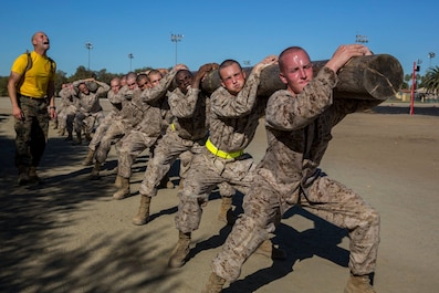 You voted and we listened! Here is this week's Top Shot! WEEKLY TOP SHOT! TOP SHOT WINNER!!! Recruits with Hotel Company, 2nd Recruit Training Battalion, carry logs during a log drill exercise at Marine Corps Recruit Depot San Diego, Nov. 26.