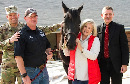 Beau, a six-year-old quarter horse, has begun his training as a caparisoned, or riderless, horse and is expected to be part of a ceremonial team that renders honors to fallen service members.