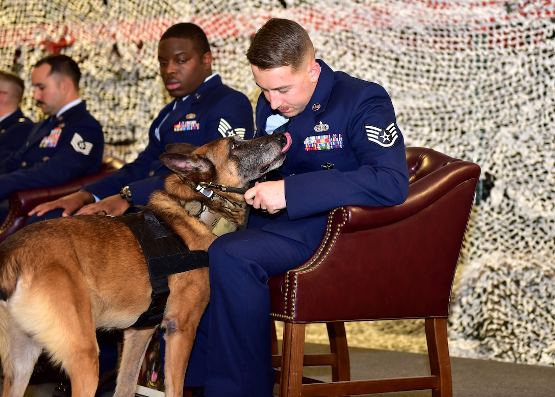 Military working dogs retire inside a building surrounded by people in uniform.