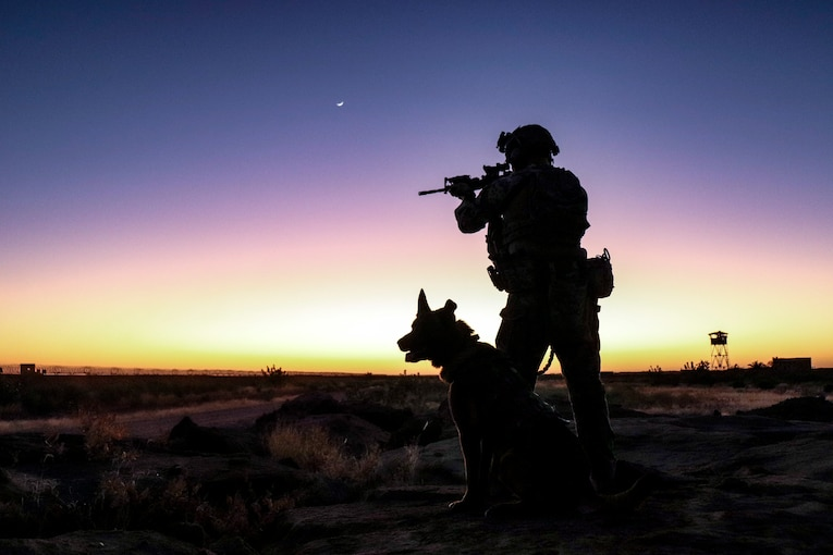 An airman and a dog keep watch at the edge of an air base.