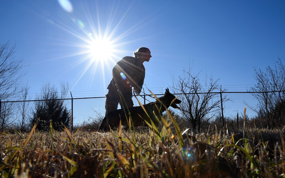 Senior Airman Sarah Pawlak, 22nd Security Forces Squadron military working dog handler, holds MWD Sani back before pursuit and attack training Dec. 10, 2018, at McConnell Air Force Base, Kansas. MWDs use this training to practice following and detaining suspects. (U.S. Air Force photo by Airman 1st Class Michaela R. Slanchik)