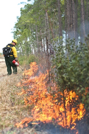 Personnel with MCAS Beaufort conduct a hazard reduction burn at Townsend Bombing Range Jan. 24. The burn was executed to reduce the risk of wildfires and to promote growth of wildlife and vegetation.