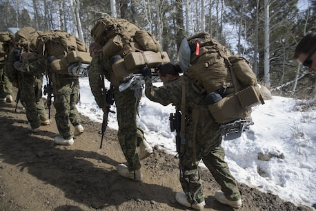 Marines with Combat Logistics Regiment 25, 2nd Marine Logistics Group assist one another during a hike as part of cold weather training at Marine Corps Mountain Warfare Training Center, Bridgeport, Calif., Jan. 26, 2018. Approximately 90 Marines participated in the week-long event where they learned survival skills, how to traverse mountainous terrain and cold weather weapons maintenance. The training will prepare the Marines for joint-force training exercise Artic Edge in northern Alaska, which will expose Marines to the peninsula's weather extremes. (U.S. Marine Corps photo by Sgt. Brianna Gaudi)