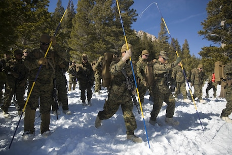 Marines with Combat Logistics Regiment 25, 2nd Marine Logistics Group look for casualties during a simulated avalanche scenario as part of cold weather training at Marine Corps Mountain Warfare Training Center, Bridgeport, Calif., Jan 28, 2018. Approximately 90 Marines participated in the week-long event where they learned survival skills, how to traverse mountainous terrain and cold weather weapons maintenance. The training will prepare the Marines for joint-force training exercise Artic Edge in northern Alaska, which will expose Marines to the peninsula's weather extremes. (U.S. Marine Corps photo by Sgt. Brianna Gaudi)