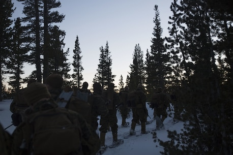 Marines with Combat Logistics Regiment 25, 2nd Marine Logistics Group traverse the tree line during an evening hike as part of cold weather training at Marine Corps Mountain Warfare Training Center, Bridgeport, Calif., Jan. 28, 2018. Approximately 90 Marines participated in the week-long event where they learned survival skills, how to traverse mountainous terrain and cold weather weapons maintenance. The training will prepare the Marines for joint-force training exercise Artic Edge in northern Alaska, which will expose Marines to the peninsula's weather extremes. (U.S. Marine Corps photo by Sgt. Brianna Gaudi)