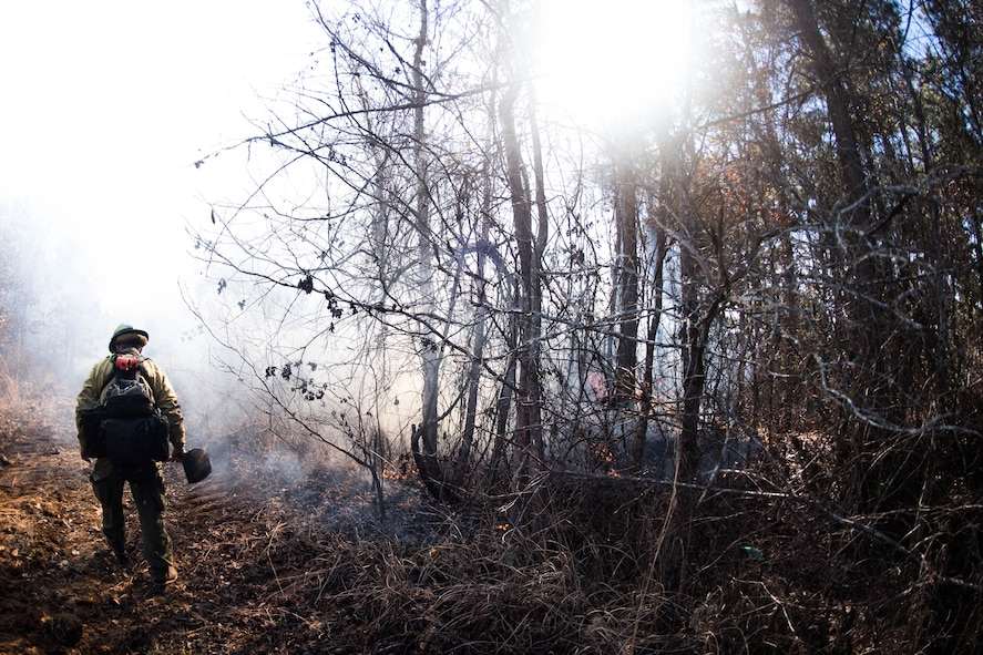 Fire and Smoke: Natural Resources controlling the burn