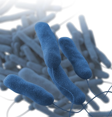 A Brooke Army Medical Center staff member who works in Building 15 was confirmed to have Legionella bacteria Feb 6.
