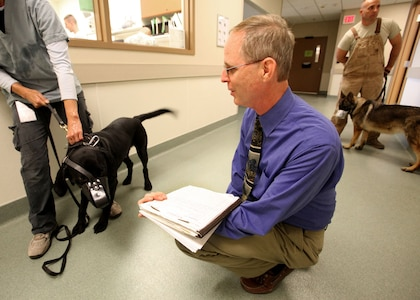 Dr. Walter F. Burghardt Jr. evaluates the behavior of a military working dog. Burghardt is the chief of Behavioral Medicine and Military Working Dog Studies at LTC Daniel E. Holland Memorial Military Working Dog Hospital at Joint Base San Antonio-Lackland.