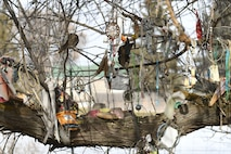 Offerings placed on a tree on the site of the Bear River Massacre near Preston, Idaho. (U.S. Air Force photo by Cynthia Griggs)