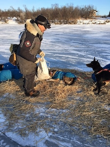 Alaska Soldier runs dogsled race