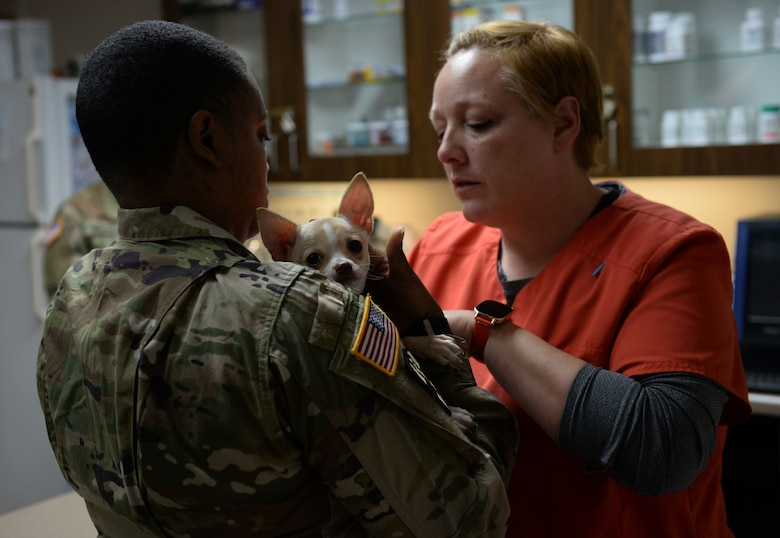 U.S. Army Staff Sgt. Constance Nicholsbingham, Fort Gordon Public Health noncommissioned officer in charge, works with Denise Wade 20th Medical Group animal health assistant, to insert a microchip into their patient at Shaw Air Force Base. S.C., Feb 7, 2018.