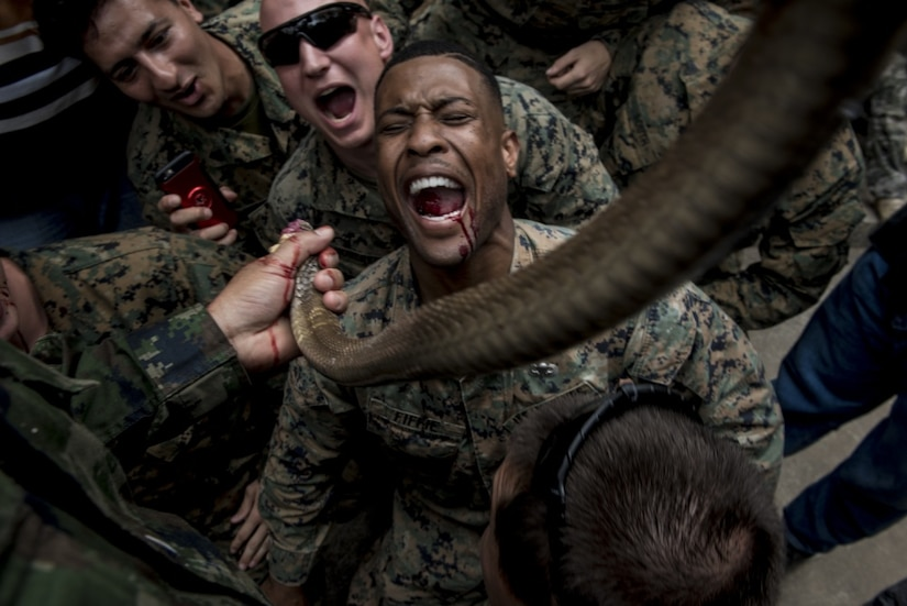 Marine Corps Sgt. Christopher Fiffie, who's assigned to the 3rd Reconnaissance Battalion, 3rd Marine Division, drinks cobra blood during jungle survival training in Sattahip, Thailand.