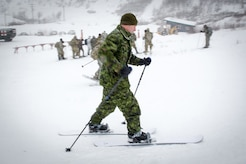 U.S., Allied, and partner-nation Soldiers from nine countries participate in the Cold Regions Military Collaborative Training Event at Arctic Valley in Joint Base Elmendorf-Richardson, Alaska, Feb. 22, 2018. The U.S. Army Alaska hosted event focused on strengthening relationships among allied and partner nations with experience operating in cold weather, and at high elevations; and set conditions for future collaboration.