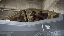 First Lt. David Moore, 34th Fighter Squadron F-35A Lightning II pilot, goes through pre-flight procedures at Kadena Air Base, Japan, Nov. 16, 2017. The F-35A provides the warfighter unprecedented situational awareness and the required survivability to fight and win in highly contested environments. (U.S. Air Force photo by Airman 1st Class Greg Erwin)