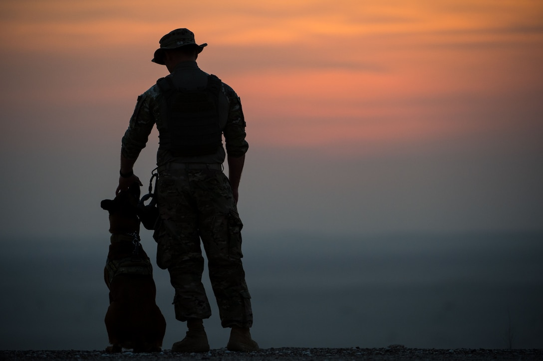 """A 380th Expeditionary Security Forces Squadron military working dog team awaits the start of a detection training scenario at an undisclosed location in Southwest Asia, Jan. 10, 2017. Military working dogs complete weekly training scenarios to maintain the standards needed to protect military installations. """"There's always that chance that the only thing between you and an explosive is your dog and 26 feet of leash,"""" Staff Sgt. Dakoda, 380th ESFS military working dog handler, said.  """"We rely on our dogs and have faith that they are going to do their job."""" (U.S. Air Force photo by Senior Airman Tyler Woodward)"""