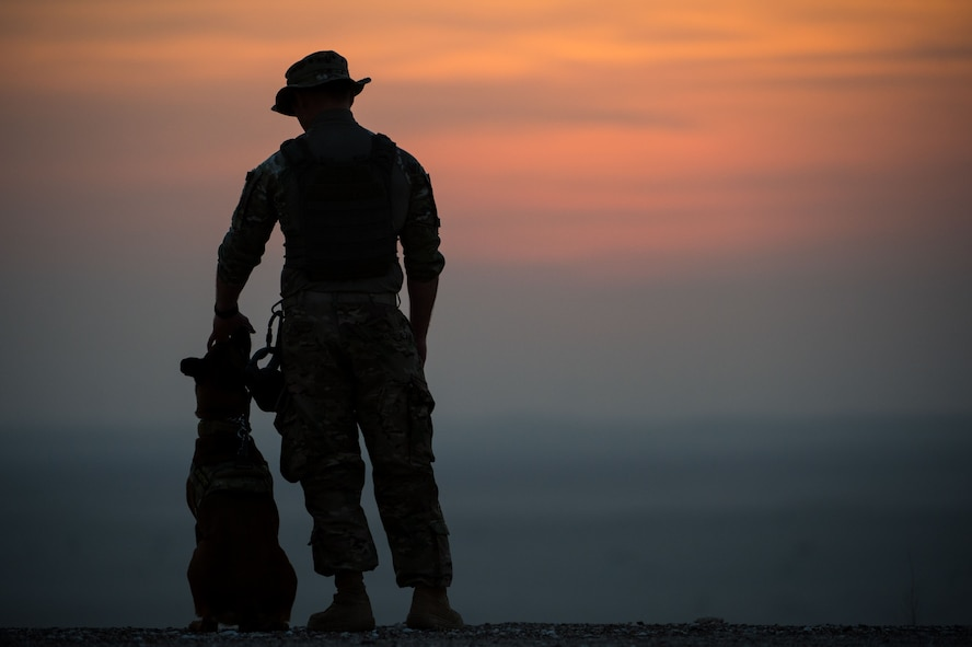 "A 380th Expeditionary Security Forces Squadron military working dog team awaits the start of a detection training scenario at an undisclosed location in Southwest Asia, Jan. 10, 2017. Military working dogs complete weekly training scenarios to maintain the standards needed to protect military installations. ""There's always that chance that the only thing between you and an explosive is your dog and 26 feet of leash,"" Staff Sgt. Dakoda, 380th ESFS military working dog handler, said.  ""We rely on our dogs and have faith that they are going to do their job."" (U.S. Air Force photo by Senior Airman Tyler Woodward)"