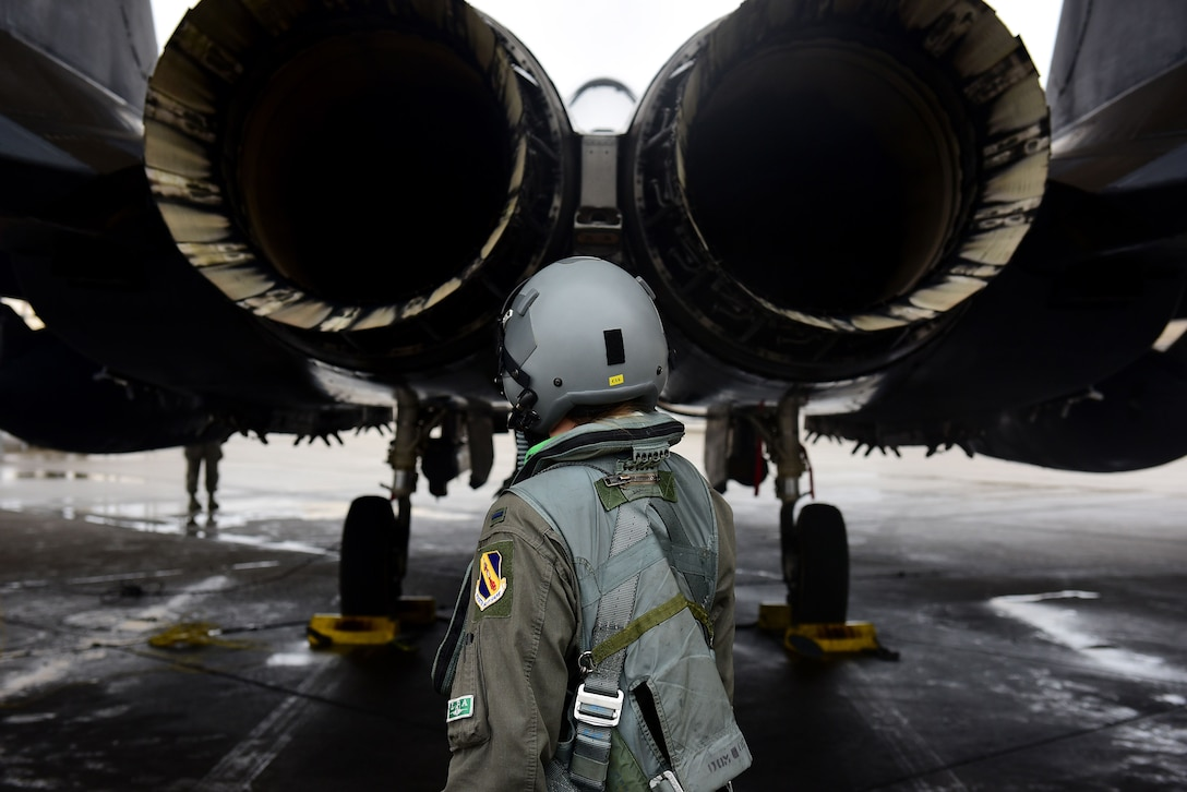 1st Lt. Lauren Vinson, 333rd Fighter Squadron weapon systems officer, performs a preflight check on an F-15E Strike Eagle barrier during exercise Thunderdome 18-01, Jan. 11, 2018, at Seymour Johnson Air Force Base, North Carolina. The exercise was designed to prepare and test the response efforts of Team Seymour Airmen in the event of a real-world contingency. (U.S. Air Force photo by Airman 1st Class Kenneth Boyton)