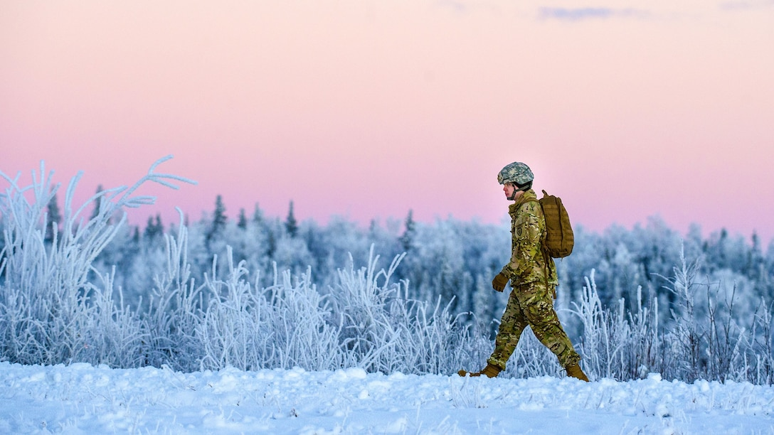 A soldier in snow past snow-covered vegetation against a pink sky.