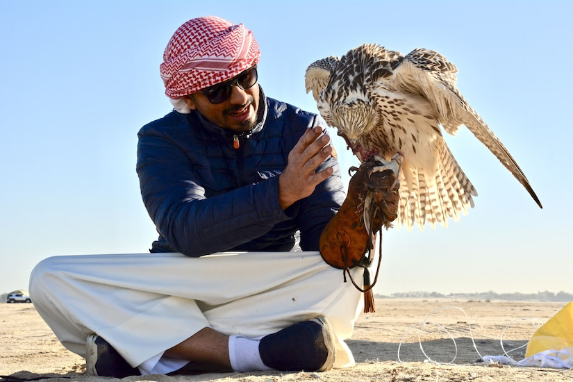 Man sitting on the ground holding a falcon.