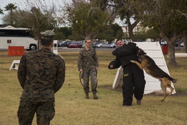 Guests participating in the first Marine Corps Air Station (MCAS) Yuma Winter Tour of the year observe the capabilities of the station, a demonstration of the K-9 unit, and an obstacle course demonstration at various locations on MCAS Yuma, Ariz., Jan. 16, 2017.  The tours have not been conducted for the past two years, but have been resumed by Col. David A. Suggs, the station commanding officer, to build a better relationship with the community. (U.S. Marine Corps photo taken by Cpl. Isaac Martinez)