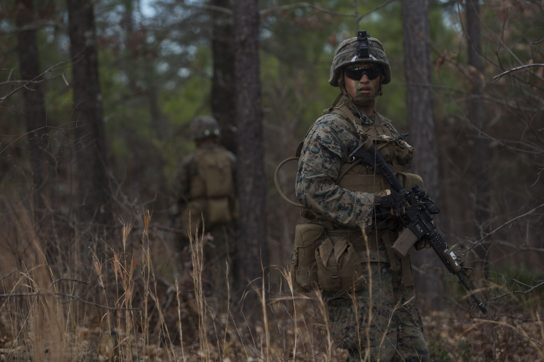 Lance Cpl. Branson Benavidez, a Marine with 2nd Battalion, 8th Marine Regiment, checks the rear of a patrol at a platoon live-fire range during a deployment for training exercise at Fort A.P. Hill, Va., Dec. 7, 2017. The Marines are conducting the training to maintain proficiency at the squad, platoon, company, and battalion-level of warfighting in preparation for an upcoming deployment to Japan. The Marines patrolled, detonated Bangalore torpedoes to breach obstacles, threw M67 fragmentation grenades to clear trenches, and conducted live-fire movements to take an objective. (U.S. Marine Corps photo by Lance Cpl. Ashley McLaughlin)