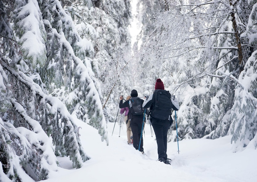 """Team Ramstein members walk through the forest during a """"Black Forest, White Snowshoe"""" trip in the Black Forest, Sasbachwalden, Germany, Jan. 21, 2018. Participants spent the day on a guided hike through the woods, including a stop for lunch at a hilltop restaurant. (U.S. Air Force photo by Senior Airman Elizabeth Baker)"""