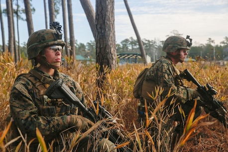 With boots on the ground and rounds down range, scout Marines with  2nd Light Armored Reconnaissance Battalion, 2nd Marine Division conducted scout training at Camp Lejeune, North Carolina, Jan. 20-21, 2018.