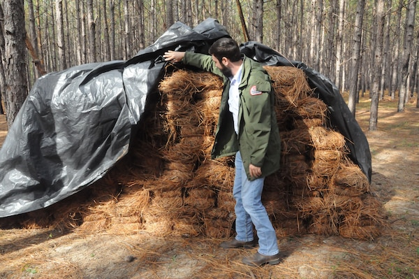 Josh O'Neal, resident forester at the U.S. Army Corps of Engineers Forestry Resources Office, Fort Stewart, Georgia, inspects bales of pine straw before they are hauled off the installation.