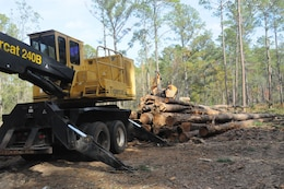 The Savannah district generates $3 million dollars annually from timber sales at Fort Stewart, Georgia.