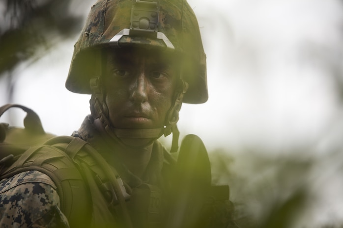 U.S. Marine Sgt. Stafford Melerine posts security in the tree line during Exercise Samurai Jan. 23, 2018, on Camp Hansen, Okinawa, Japan. Marines with Headquarters and Support Battalion, 3rd Marine Division trained to refine their skills for Division operations in an expeditionary environment. Melerine, a native of Charleston, South Carolina, is a diesel mechanic and supported the exercise as the platoon sergeant for the security platoon.
