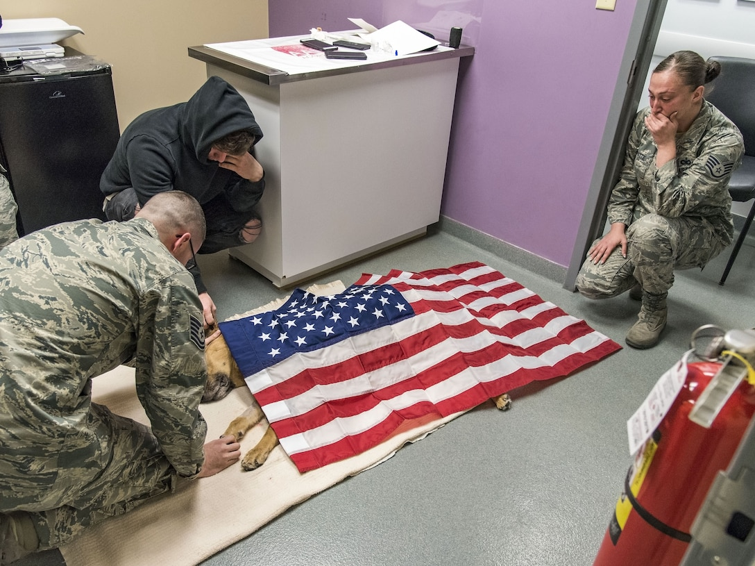 Tech. Sgt. Matthew Salter, 436th Security Forces Squadron military working dog kennel master; retired Tech. Sgt. Jason Spangenberg, owner of retired Military Working Dog Rico; and Staff Sgt. Ashley Beattie, 436th SFS unit deployment manager, grieve over the U.S. flag-draped body of MWD Rico Jan. 24, 2018, at the Veterinary Treatment Facility on Dover Air Force Base, Del. MWD Rico was humanely euthanized by a U.S. Army veterinarian due to his declining health condition caused by Canine Degenerative Myelopathy. (U.S. Air Force photo by Roland Balik)