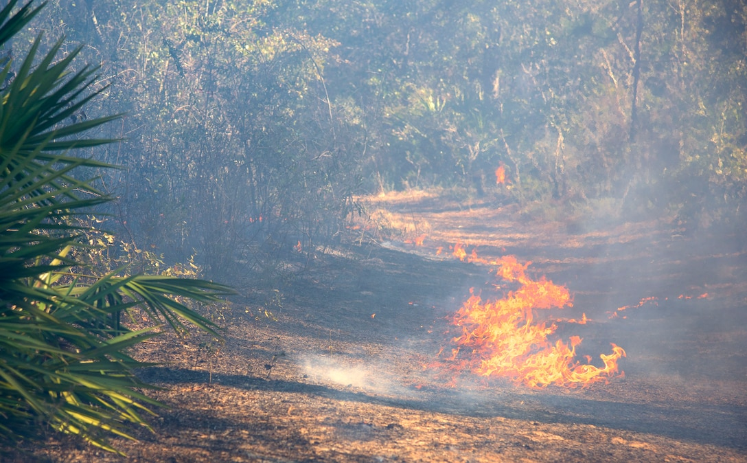 Air Force Civil Engineer Center wildland fire managers conduct a prescribed burn at White Point Recreation Area on the Eglin reservation in Florida. Prescribed fires maintain the base's ecosystem in its pristine state, reduce dangerous buildup of understory and enable maximum flexibility to conduct test and training missions without causing catastrophic wildfires.The Fire Management division here applies prescribed fire to an average of 90,000 acres annually.