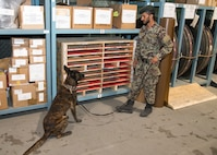 TAAC-Air helps establish AAF Military working dog program