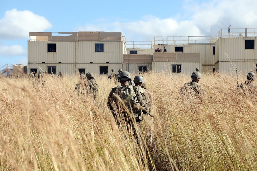 Soldiers walk through tall grass toward a building.