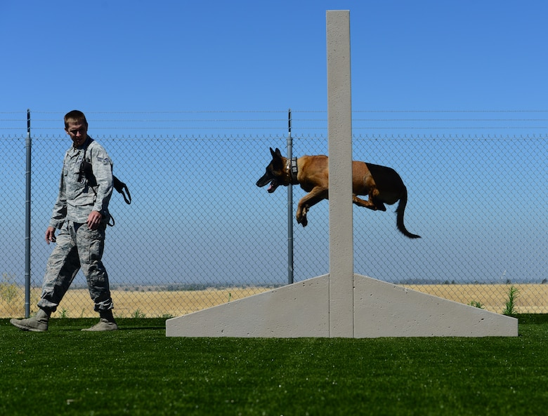 The 9th Security Forces Squadron military working dog unit recently completed a new training area designed to enhance the companionship between handlers and their dogs