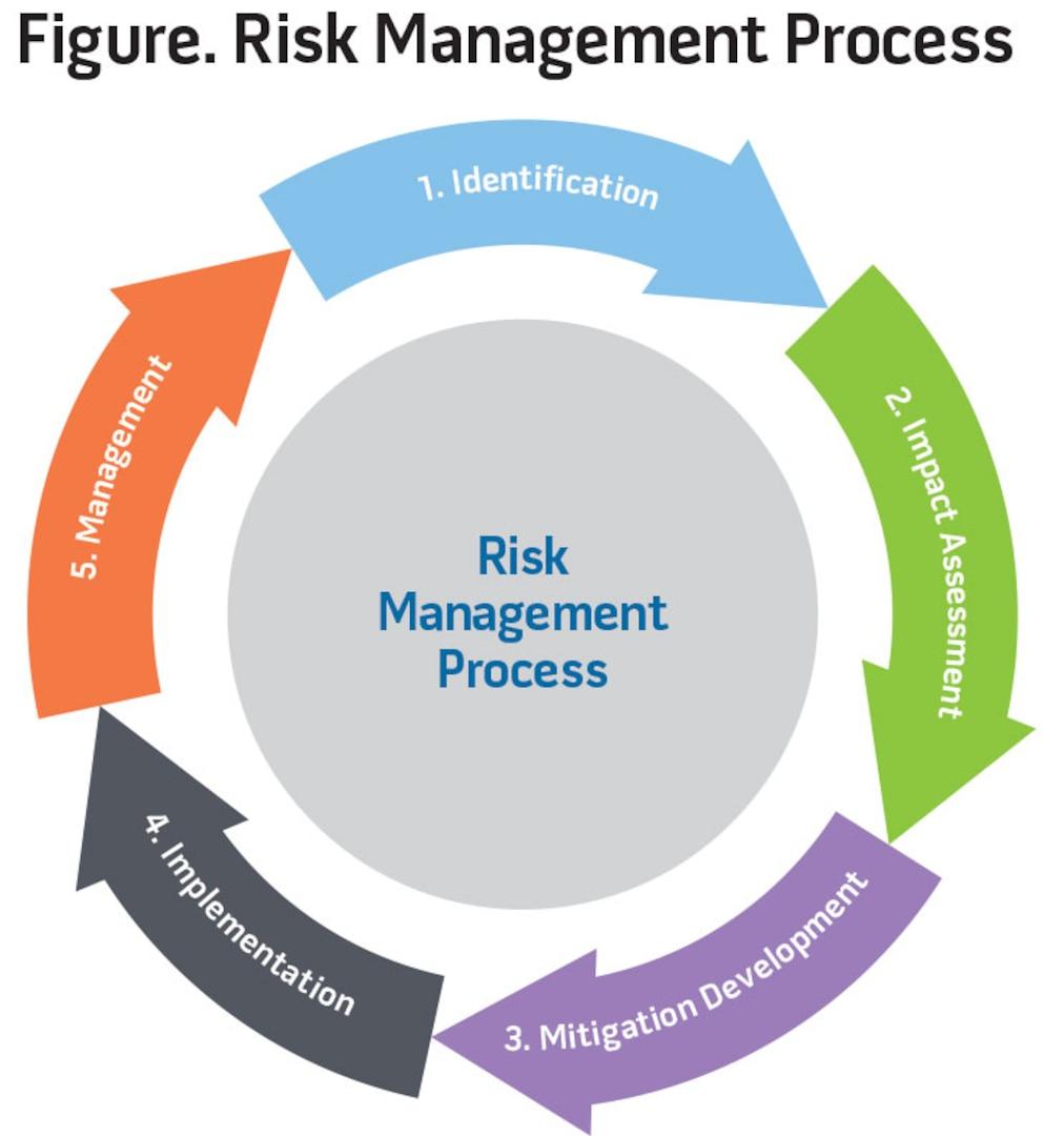 Figure. Risk Management Process