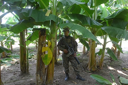 A Salvadoran soldier provides security at the perimeter of a school construction site, June 25, 2018, in La Paz Department, El Salvador. The construction is part of U.S. Army South-led Beyond the Horizon exercise lasting May 12 through Aug. 4, 2018.