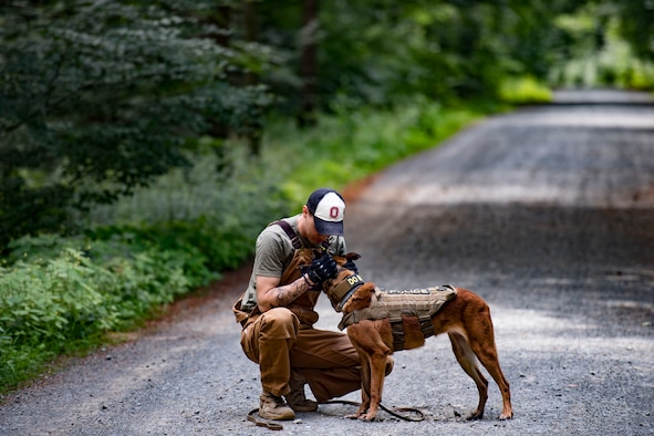 U.S. Air Force Staff Sgt. Matthew Baxter, 86th Security Forces Squadron military working dog handler, praises his dog Rrisky, after performing search training in Ramstein, Germany, June 25, 2018. Dogs have officially been serving alongside American forces since WWII. (U.S. Air Force photo by Senior Airman Devin Boyer)