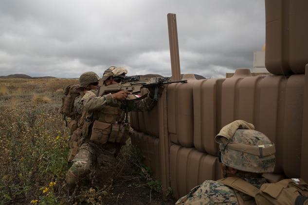 U.S. Marines and RIMPAC participants practice NEO on Island of Hawaii