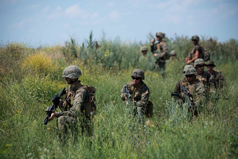 Marines maneuver through a grassy field.