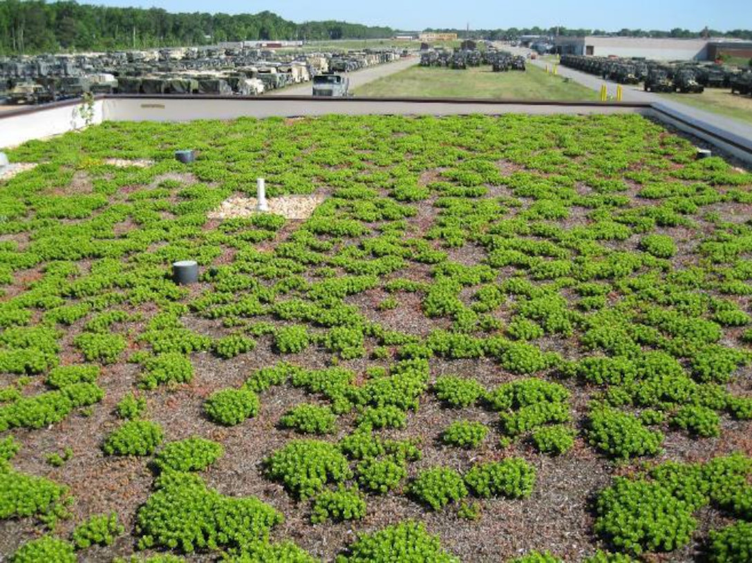Green roof reduces storm water runoff