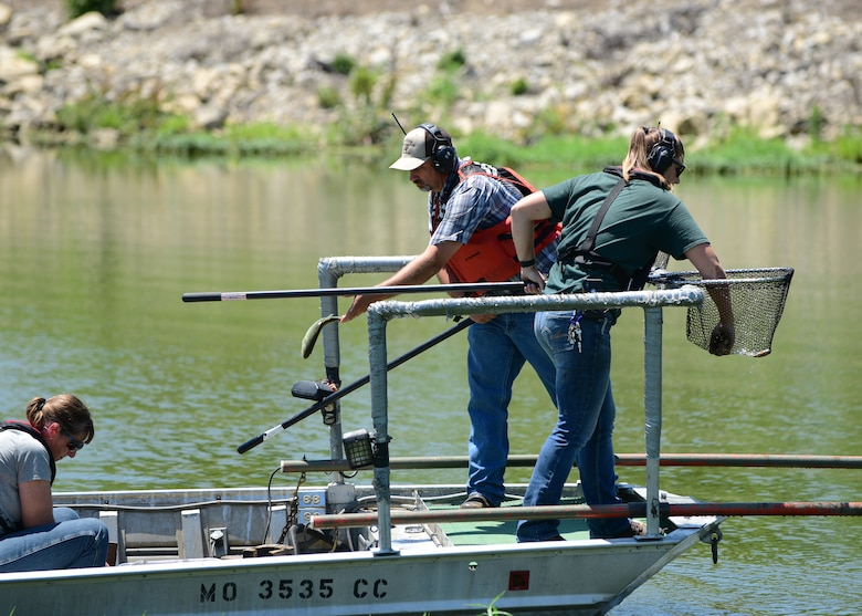 Keith Donaldson, a natural resources manager assigned to the 509th Civil Engineer Squadron, center, and members from the Missouri Department of Conservation collect fish from the North Lake at Whiteman Air Force Base, Missouri, June 5, 2018. The lake has a balanced population of bluegill and largemouth bass. All the lakes on base are open for fishing and no permit or license is required. (U.S. Air Force photo by Staff Sgt. Danielle Quilla)