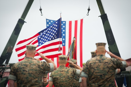 U.S. Marines with 3rd Assault Amphibian Battalion (AABN), 1st Marine Division, salute the flag during a change of command ceremony at Marine Corps Base Camp Pendleton, Calif., June 1, 2018. The ceremony was held in honor of Lt. Col. William E. O'Brien, who relinquished his post as 3rd AABN commanding general to Lt. Col. Keith C. Brenize.