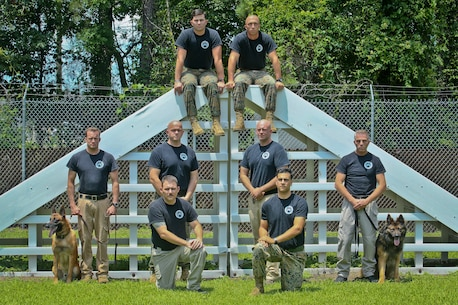 Members of the Military Working Dog section of the Provost Marshal's Office pose for a photo aboard Marine Corps Air Station Beaufort June13. The MWD section aids the air station in detecting contraband and conducting security checks. The MWD section is attached to Headquarters and Headquarters Squadron.