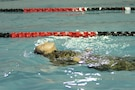Pfc. Maria Litterio, assigned to the 97th Transportation Company at Fort Eustis, Virginia, swam the backstroke in the German Armed Forces Proficiency Badge 100-meter swim. Litterio was one of more than 75 Soldiers and Airmen who strived to earn the badge for military proficiency. (U.S. Army Reserve photo by Sgt. 1st Class Emily Anderson, 80th Training Command)